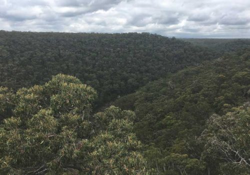 DHARAWAL: MEET SYDNEY'S NEWEST NATIONAL PARK
