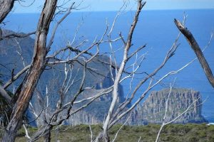 Three-Capes-views Penny Schroder Tasmania