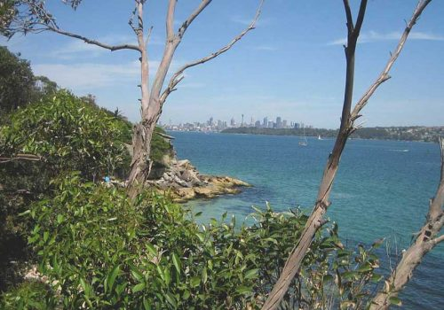 Sydney-North-Shore-walks