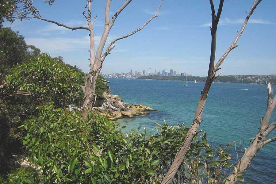 Sydney-North-Shore-walks