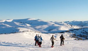 Where to Ski in Australia